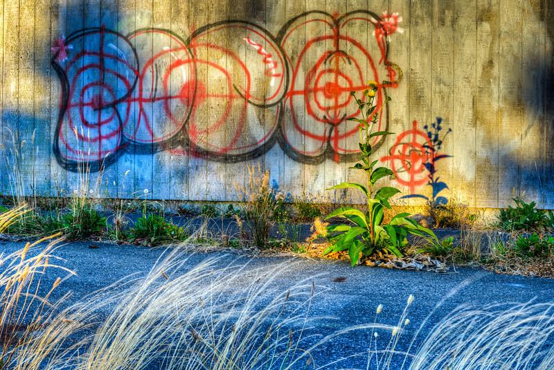 Backlot Graffiti