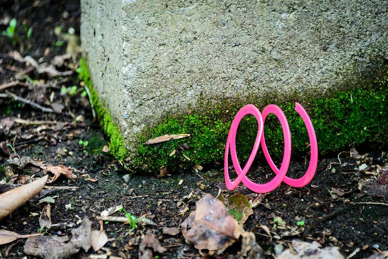 Pink Detritus