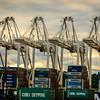 The Big Cranes