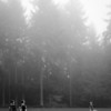 Foggy Morning Soccer
