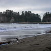 James Island at La Push
