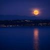 Hazy Moonrise Over Tramp Harbor