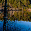 Fisher Pond