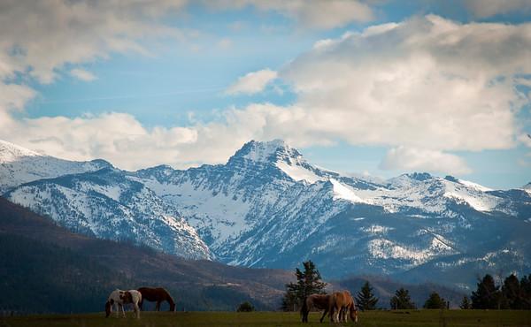 Grey Wolf Peak