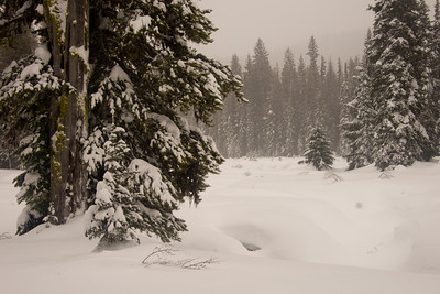 Winter at Lolo Pass