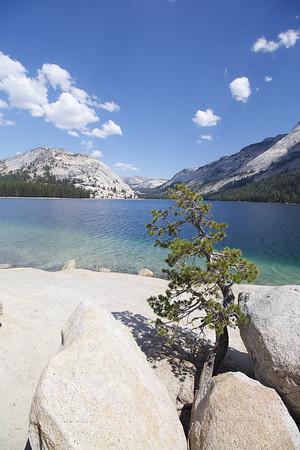 Lake View; Yosemite National Park 2016