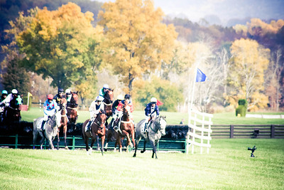 Steeple; VA Gold Cup 2012