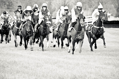 The Race; VA Gold Cup 2012