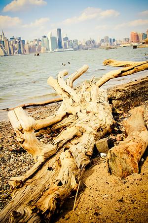 A View; Brooklyn 2014