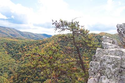 Overlook; Seneca Rocks 2014