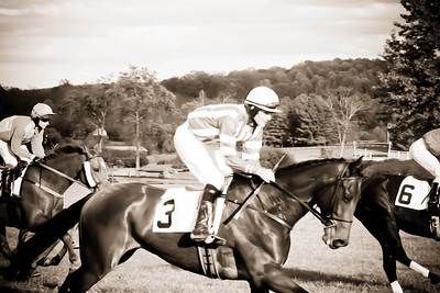 Three; VA Gold Cup 2012