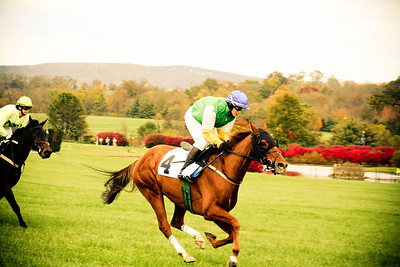 Four; VA Gold Cup 2012