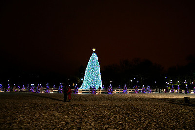 National Christmas Tree; 2010