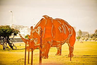 Rhino Sculpture; Cape Town South Africa 2014