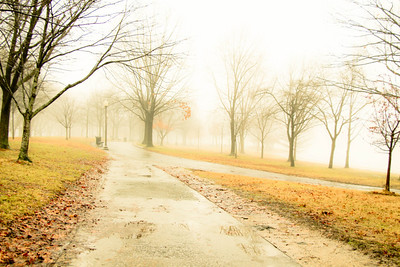 Constitution Gardens in Fog; 2011