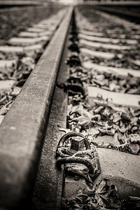 Detail of an old railway track with autumn leafs