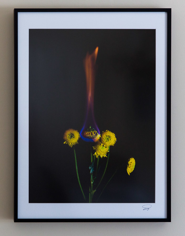 "A print framed to 19""x26"" with antiglare plexiglass."