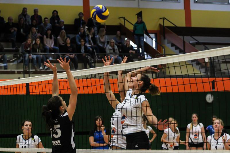 Austrian Volley League 17/18 - SG Prinz Brunnenbau Volleys gg. VBV Trofaiach