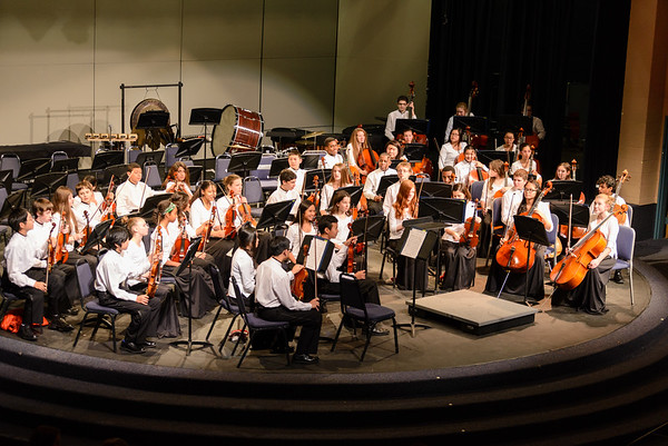 Winter Orchestra Concert 2014