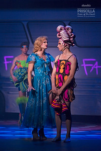 Priscilla Queen of the Desert. Christchurch 2017.