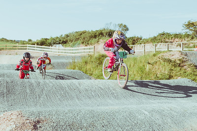 013 Pritchard BMX