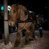 Tomtens häst