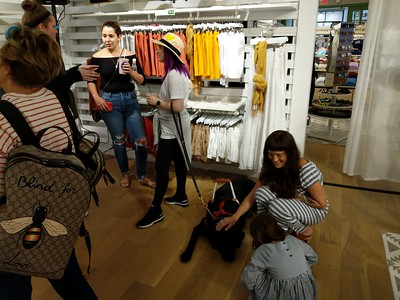 Molly Burke Talk - April 27th, 2019. Aerie Store. Stoneridge Mall. Pleasanton, CA, USA  Molly Burke​ and her guide dog. I don't think you were suppose to pet the dog when they have their harness on...  Accessibility: A photo inside the Aerie store of Molly Burke, her mother, Molly Burke's guide dog, Gallop, and 4 other people. Molly Burke and her mother is busy talking to 2 of the people in the photo. The 2 other people are petting Gallop who has its harness on. Molly Burke is holding Gallop's leash. In the background is the Aerie store.