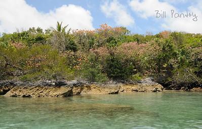 Marshalls Island