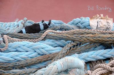 """""""Faithful"""" ropes"""