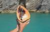 Helmet Conch, Nonsuch Island, Castle Harbour