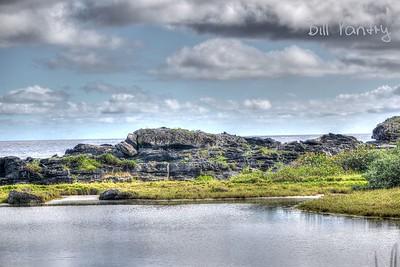 Spittal Pond Nature Reserve, Smith's, Bermuda.