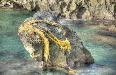 Cooper's Island Nature Reserve, St. David's Island, St. George's, Bermuda