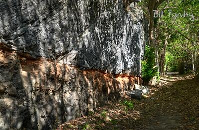 Along the Railway Trail, Southampton, Bermuda