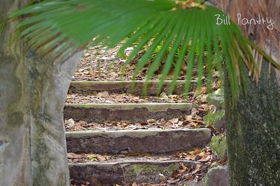 Southlands Park, Warwick, Bermuda