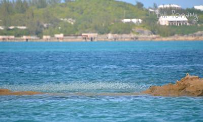 Bailey's Bay, Hamilton Parish, Bermuda