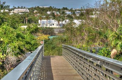 Railway trail at Flatts Inlet, Smith's, Bermuda