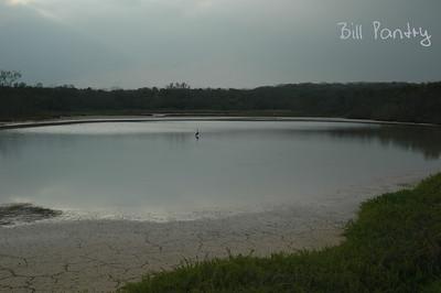 2005_03_0721