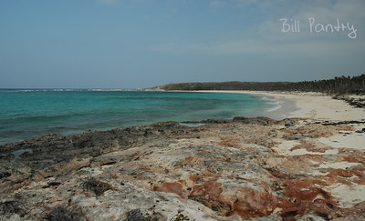 Bahamas, Long Island, Dean's Blue Hole & Turtle Cove