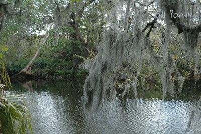 Tampa Rowlett Park Hillsborough River