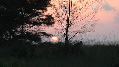 2006_04_0043