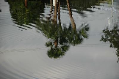 2007_12_0051