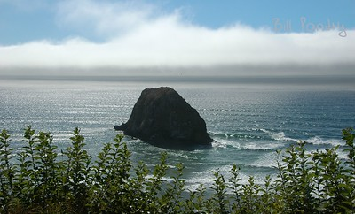 along the Oregon Coast Hwy
