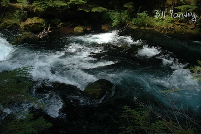 Willamette National Forest, McKenzie River