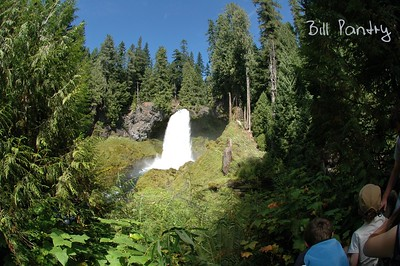 Sahalie Falls, Willamette National Forest, McKenzie Highway