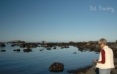 the beach at Battery Point, Crescent City, California