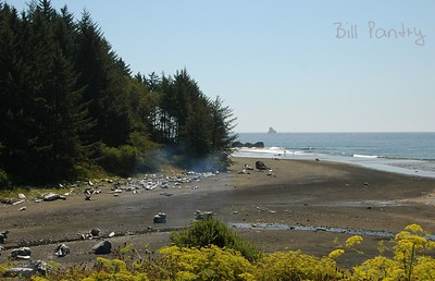 Whaleshead Beach, Oregon