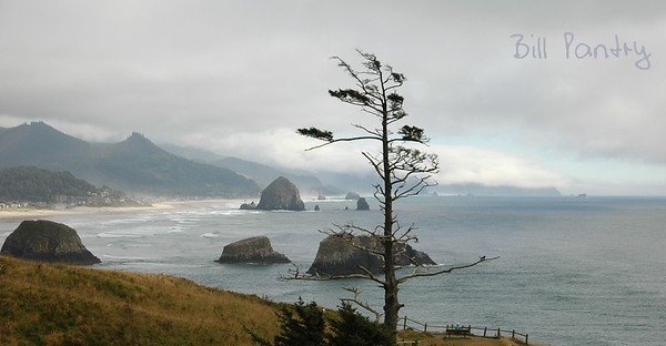 Cannon Beach from Ecola Point, Oregon Coast Hwy