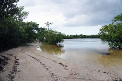 Shell Island Road