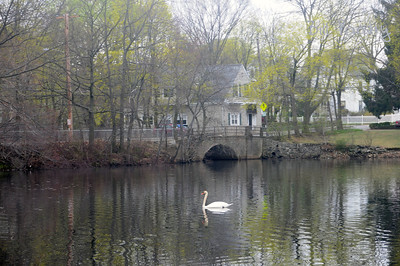 Along the Charles River, Waltham, Massachusetts