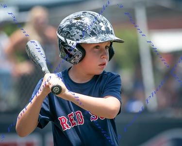 WS AA Red Sox vs Cubs 1:15 - June 1, 2019